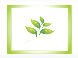 Vector Icon Of Green Leaf