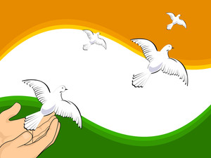 Vector Illustration Flying Pigeons On Indian Flag Colors Background.