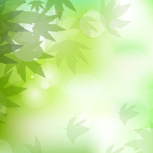 Vector Illustration Of Nature Background With Green Leaves And Space For Your Text