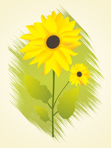 Vector Isolated Sunflower