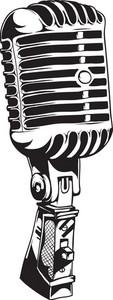 Vector Microphone