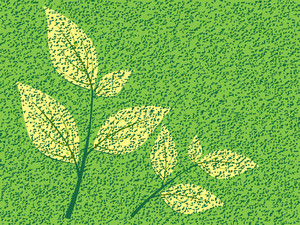 Vector Natural Background