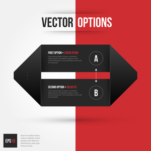 Vector Origami Layout With Two Options. Eps10.