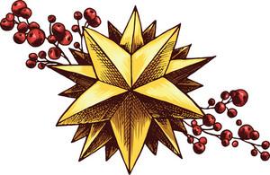 Vector Ornamental Star