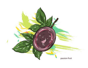 Vector Passion Fruit With Colorful Splashes