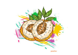 Vector Peaches With Colorful Splashes