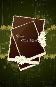 Vector Photo Frames With Flowers