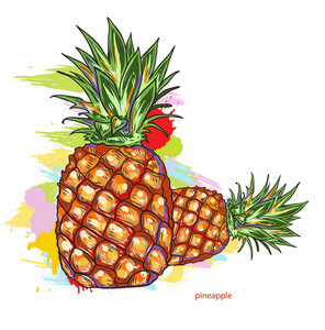 Vector Pineapple With Colorful Splashes