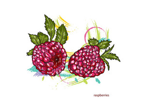 Vector Raspberries With Colorful Splashes