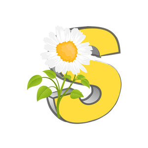 Vector S Alphabet With Flower