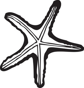 Vector Sea Star