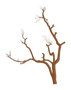 Vector Shape Of Dead Tree