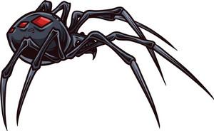Vector Spider