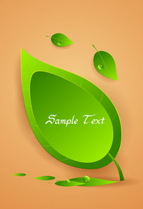 Vector Spring Frame With Leaves