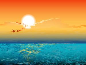 Vector Summer Background With Birds