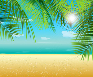 Vector Summer Background With Palm Leaves