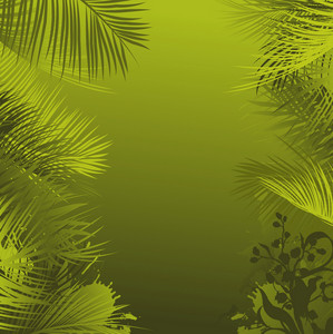 Vector Summer Background With Palm Tree Leaves