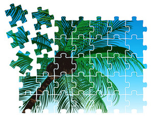 Vector Summer Puzzle With Palm Trees