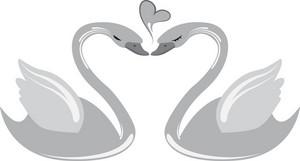 Vector Swans