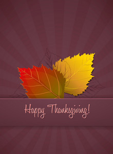 Vector Thanksgiving Illustration With Leaves