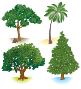 Vector Trees.