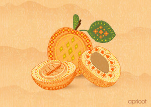 Vector Vintage Background With Apricot