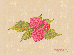 Vector Vintage Background With Raspberry