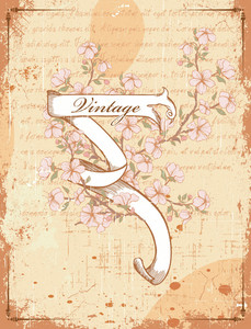 Vector Vintage Scroll With Floral