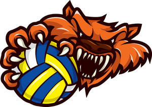 Vector Volleyball Mascot