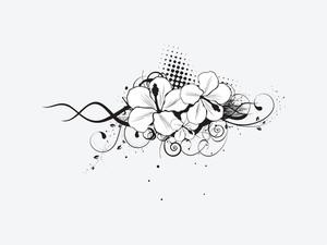 Vector White Hibiscus Flower Illustration