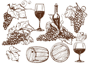 Vector Winery Design Elements Set.