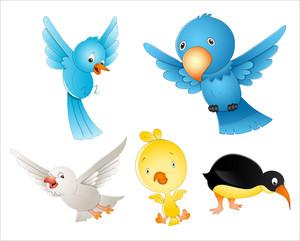 Vectors Birds