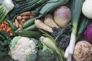 Vegetable Selection Background