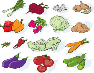 Vegetables. Vector.
