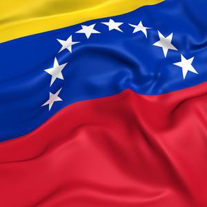 Venezuela (state) Flag