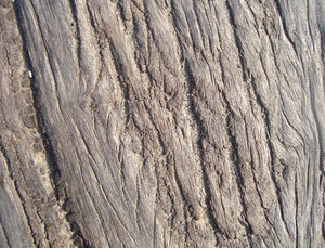 Verticle_texture_wood