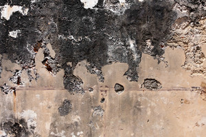Very old and grungy concrete wall with cracks and stains.