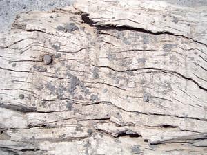Very_old_vintage_wood