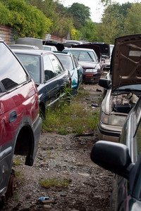 View of the rows of old junked cars in an automotive salvage yard.