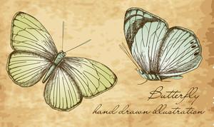 Vintage Butterfly Set