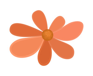 Vintage Orange Flower