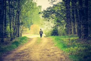 Vintage photo of man walking by forest path. Photo with vintage mood effect