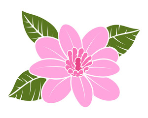 Vintage Pink Blossom Vector Illustration