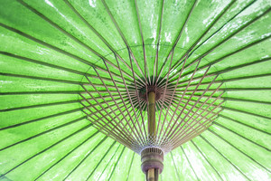 Vintage retro umbrella asian style