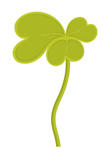 Vintage Shamrock Vector Illustration