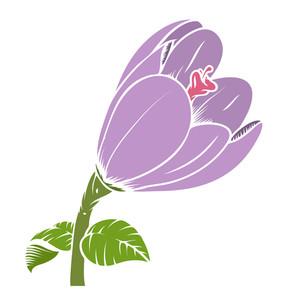 Vintage Tulip Flower Vector