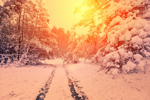 Vintage winter snowy desert road at sunset light