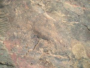 Vintage_rock_surface