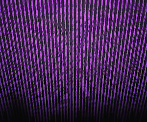 Violet Binary Matrix Background