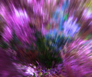 Violet Garden Abstract Background